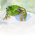 Litoria caerulea - Green Tree Frog by melhillswildart