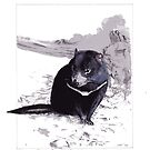 Tasmanian Devil by melhillswildart