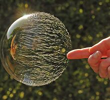 Bubbles don't pop, they RIP! by Richard Heeks