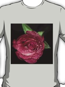 Pink rose with water dew. T-Shirt