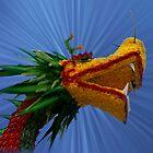 Floral Dragon, Le Thai Park, Hanoi, North Vietnam by Bev Pascoe