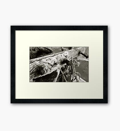 Nails On A Boat Framed Print