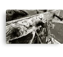 Nails On A Boat Canvas Print
