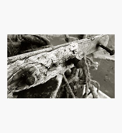 Nails On A Boat Photographic Print