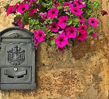 Mailbox by Silvia Ganora