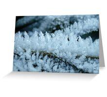 Tiny Frosty World Greeting Card