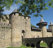 Chateau de Comtal, Carcassonne by jacqi