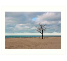 A tree by the lake. Art Print