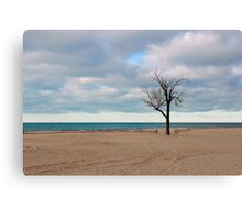 A tree by the lake. Canvas Print