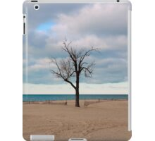 A tree by the lake. iPad Case/Skin