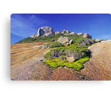 Mt Bishop Canvas Print