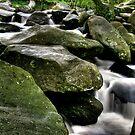 """Dancing Around The Rocks"" by Bradley Shawn  Rabon"