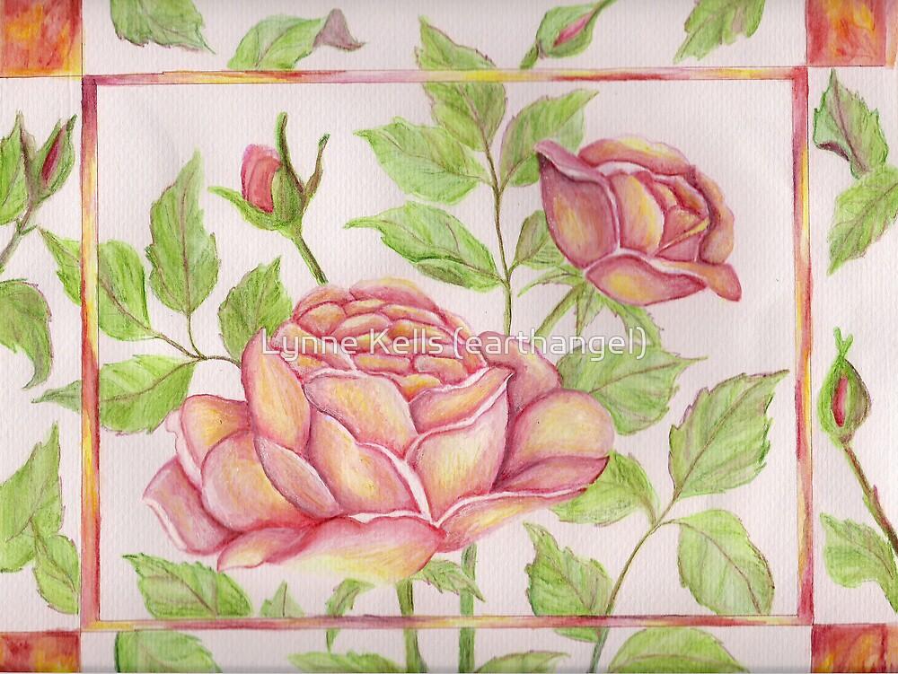 Framed Rose by Lynne Kells (earthangel)