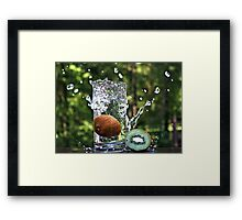 Splash of fresh Kiwi. Framed Print
