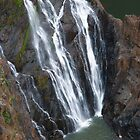 Barron falls by Jessy Willemse