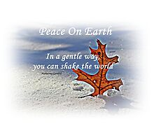 Peace on earth. Photographic Print