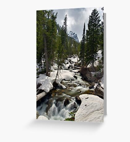 Cascades - On the Way to Hidden Falls Greeting Card