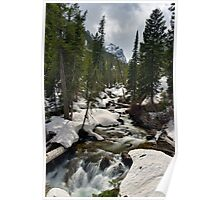 Cascades - On the Way to Hidden Falls Poster