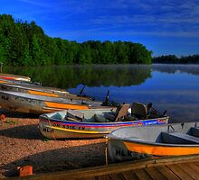 Lake Boats by Ron Waldrop