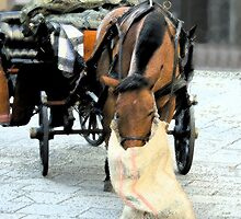 Naples.Buggy by MartyMalliton