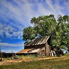 This Old Barn by Gene Praag