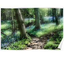 Bluebell Hill Poster