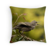Baby Starling Throw Pillow