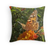 """Vanessa  Cardui (or Cynthia Cardui or """"Belle-Dame"""" or """"bella-Dama"""" or Painted Lady) Butterfly Throw Pillow"""