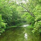 Big Darby Creek by CynLynn