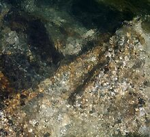 River Rock Abstract 3 by Tim Sousa