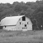 B & W Barn by Cathy Cale