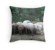 Line Up at the Trough Throw Pillow