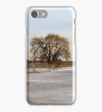Entrance to the Willow iPhone Case/Skin