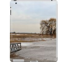 Entrance to the Willow iPad Case/Skin
