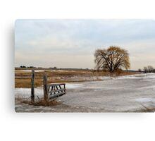 Entrance to the Willow Canvas Print
