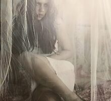 Thinly Veiled  by Tara Paulovits