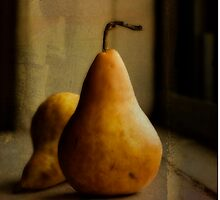 Pears by YTYT