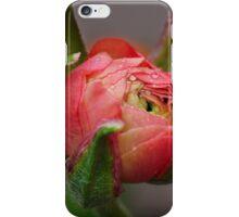 A pink bud iPhone Case/Skin