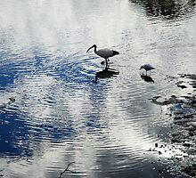 Cloud Reflections by Renee Hubbard Fine Art Photography