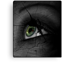 Broken Visions  Canvas Print
