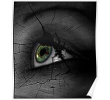 Broken Visions  Poster