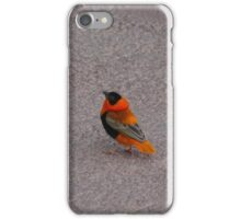 African Bird Case iPhone Case/Skin
