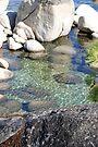 """Lake Tahoe Shoreline"" by Lynn Bawden"