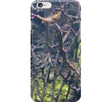 See, Horse! iPhone Case/Skin