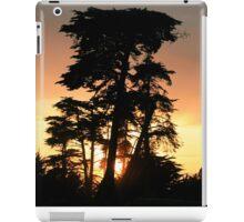 #1202 iPad Case/Skin
