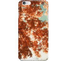Autumn Forest iPhone Case/Skin