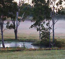 Misty Lagoon by Jenelle  Irvine