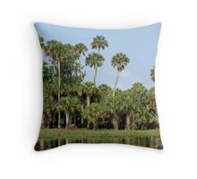 St. Johns Riverbank 4 Throw Pillow