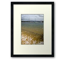 Swimming in the Bay Framed Print