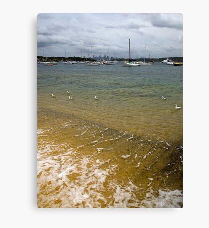 Swimming in the Bay Canvas Print